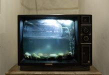 why you should stop watching tv